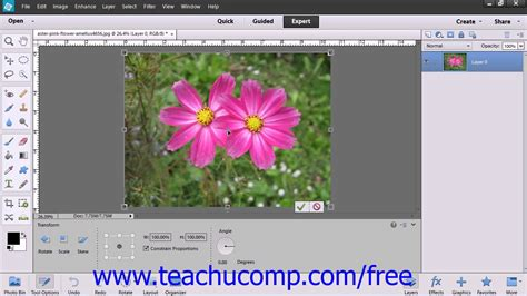 tutorial adobe photoshop elements 13 photoshop elements 12 tutorial the free transform command