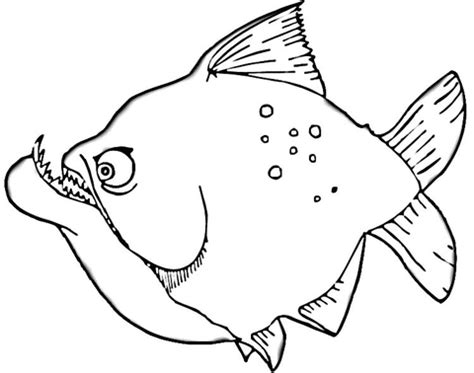 click the piranha coloring page to view printable version