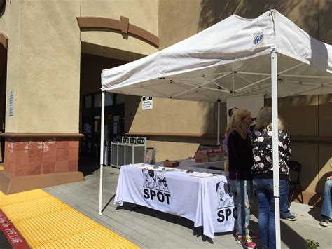 adoption events gelson s market adoption event saving pets one at a time animal rescue