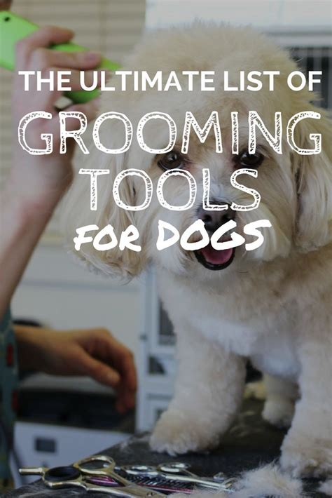 Mega Pet Bath Brush 1000 ideas about grooming supplies on