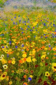 gustav klimt flower garden painting by pigment and light pandaemonium