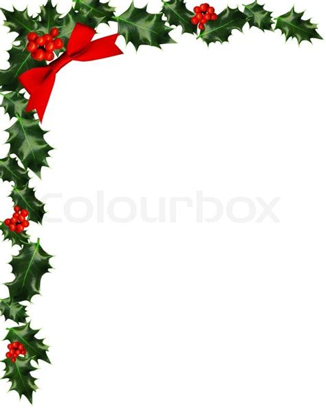 holly with berries border copy space stock photo