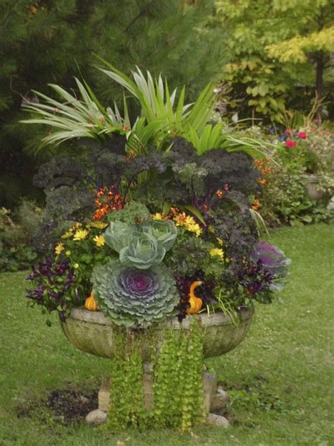 Avant Garden Flowers Fall Container By Avant Garden Container Potted Flowers
