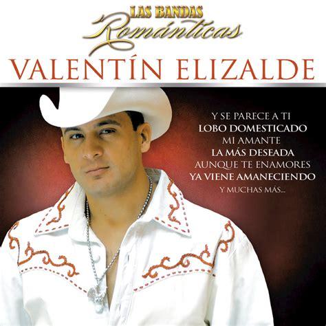 valentin elizalde musica las bandas rom 225 nticas album by valentin elizalde lyreka
