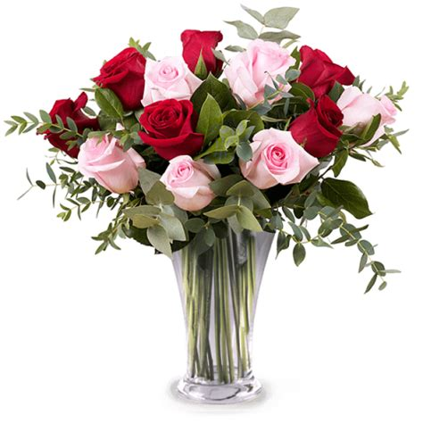 Red Roses Vase Send Flowers Internationally On The Same Day Floraqueen