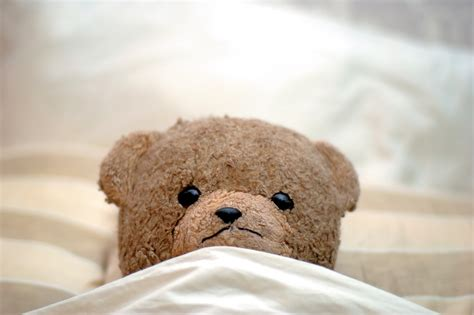 teddy bear bed how to help your child stop wetting the bed health