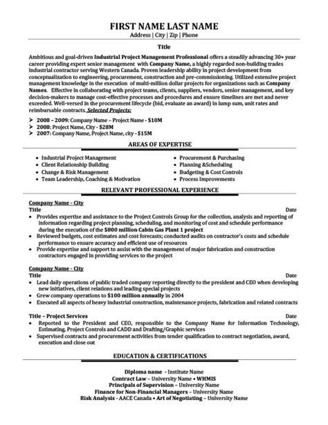 technology consultant resume template premium resume sles exle