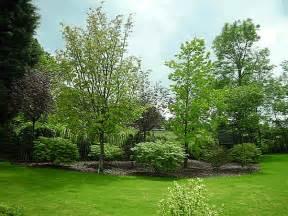Landscape Design Trees Tree Landscaping Design Ideas Landscaping Gallery Yard