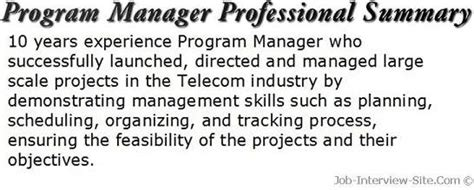 Resume Synopsis Sample by Resume Professional Summary Examples And Tips