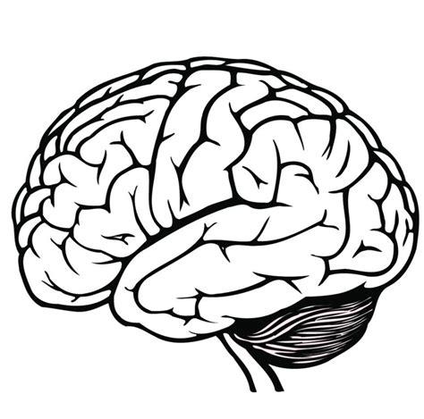 White Brain black and white brain clipart