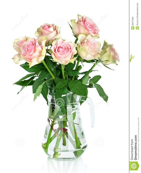 bouquet of pink roses in a vase royalty free stock images