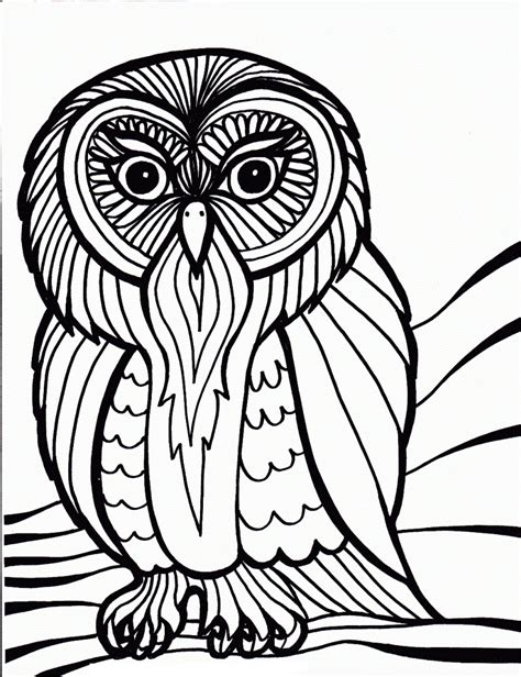 coloring pages printable owls free printable owl coloring pages for kids