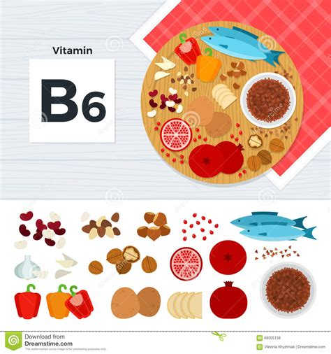 b6 alimenti products with vitamin b6 stock vector illustration of
