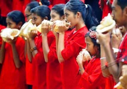 Kerang Terompet galangputrakr tahuri terompet kerang khas maluku indonesia