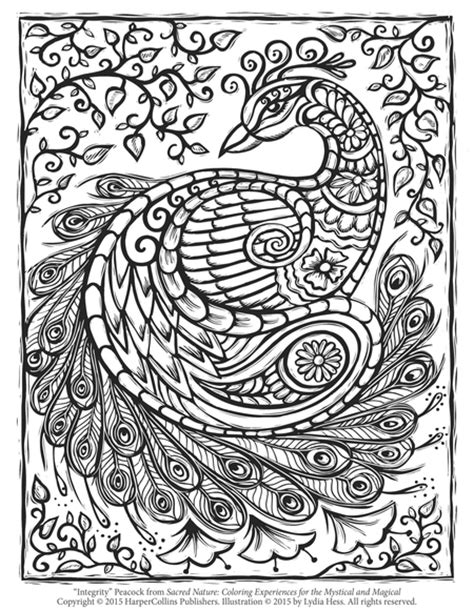 peacock coloring pages for adults free peacock coloring page craftfoxes