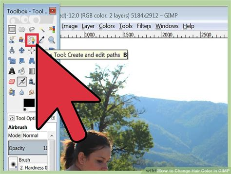 gimp replace color how to change hair color in gimp 13 steps with pictures