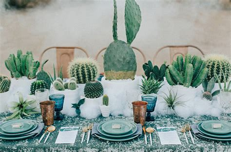 cactus trend why we love cactus and succulent dishes only