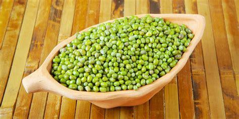 Mung Beans Kacang Hijau 1 Kg Berkualitas nguy 234 n liệu g 243 i b 225 nh chưng v 224 chi ph 237 cụ thể cho c 225 c b 224