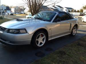 2003 Ford Mustang Convertible 2003 Ford Mustang Pictures Cargurus