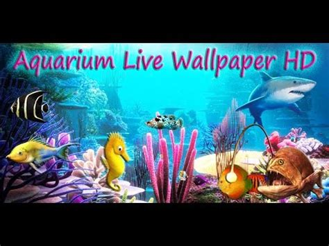 Aquarium Live Wallpaper Hd For Android Youtube | aquarium live wallpaper hd for android youtube