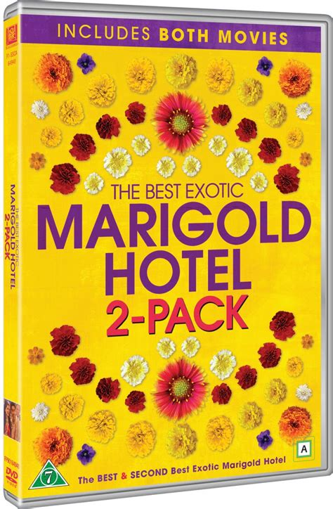 the best marigold hotel the best marigold hotel the second best
