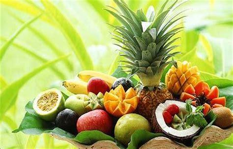 definizione alimentazione definizione di alimentazione e nutrizione studio di