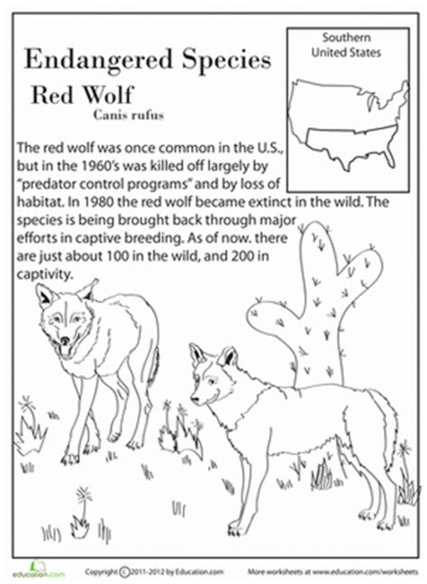 Endangered Species Worksheet by 13 Endangered Species 4th Grade Worksheets Education