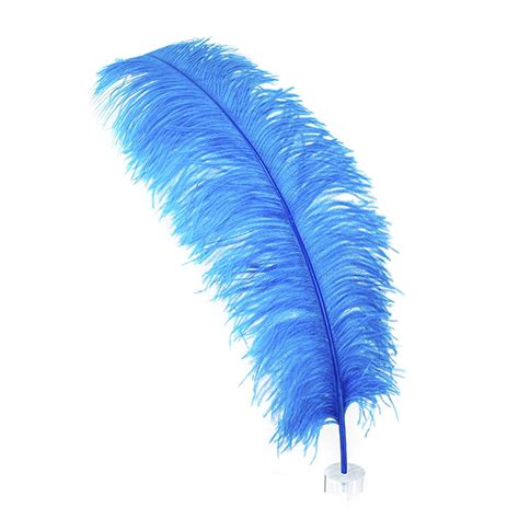 feather with ostrich feather