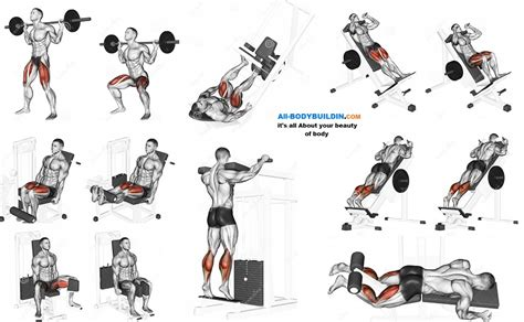 7 Leg Strengthening Exercises by Best Leg Exercises For Bodybuilding All Bodybuilding
