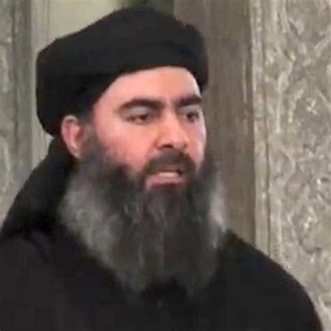 abu bakr al baghdadi did john mccain meet abu bakr al baghdadi in syria