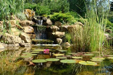 Small Garden Pond Design Ideas 21 Garden Design Ideas Small Ponds Turning Your Backyard Landscaping Into Tranquil Retreats
