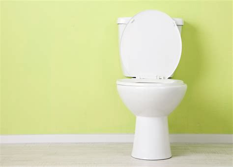 Toilet That Cleans Your But Clean Your Toilet 4 Ways Electric Drain