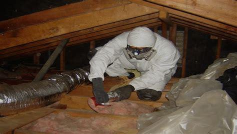 Attic Pest - attic pest decontamination