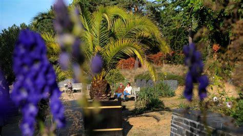 botanischer garten flottbek flottbek ein botanischer garten f 252 r loki schmidt welt