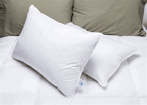 pacific pillows order your manchester mills 174 deluxe bedding today from