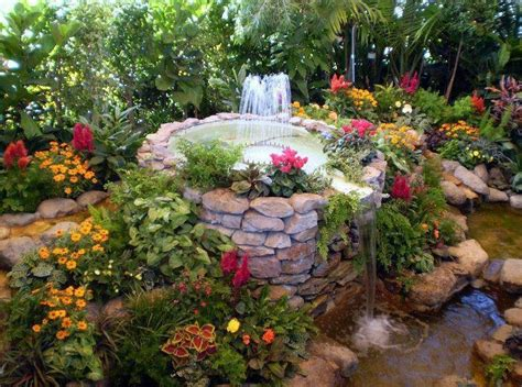 the best plants for a water garden 15 flowers for 31 best images about plants around fountain on pinterest