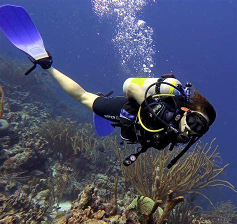 dive in is scuba diving in bonaire list worthy