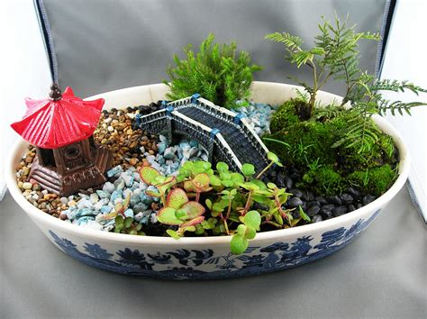 Dish Garden Ideas Dish Garden Dish Gardens Gardens Dishes And Dish Garden