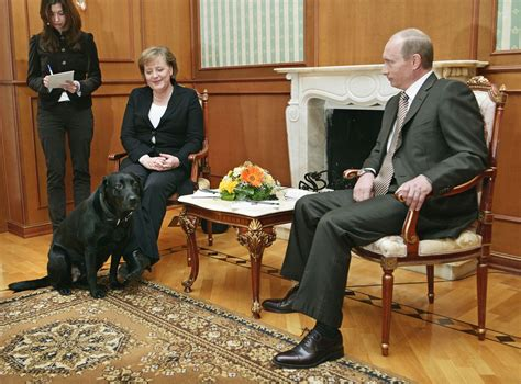 putin puppy putin says he didn t to scare merkel by bringing his to meeting