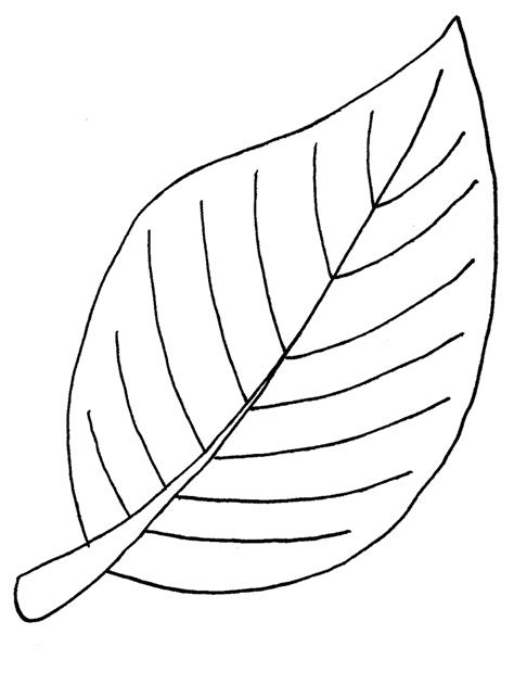 picture template free printable leaf coloring pages for clipart best