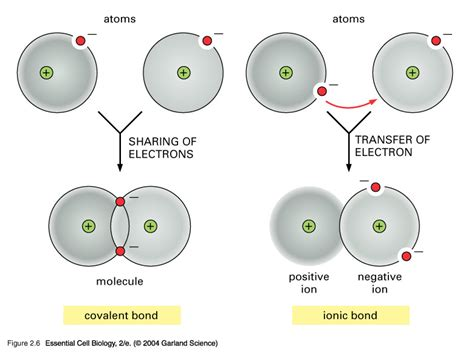 What Is The Difference Between Covalent And Ionic Bonding