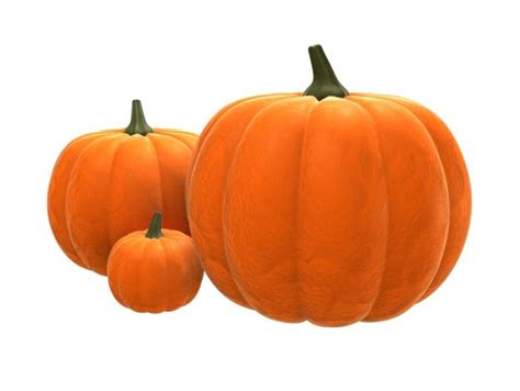 what are the health benefits of pumpkin medical news today