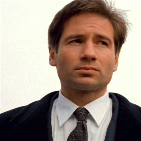Oh That David Duchovny by 75 Best Images About David Duchovny On