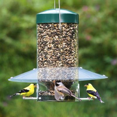 And Feeders Bird Feeders Duncraft Bird Superstore