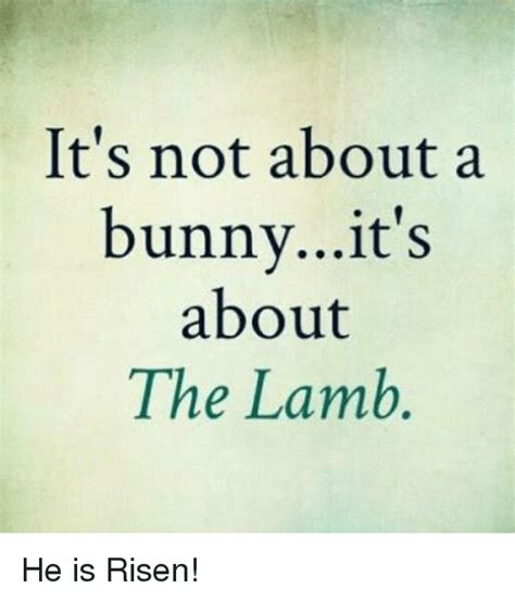 it s not about the a year on and the roads of spain books it s not about a bunnyit s about the he is risen