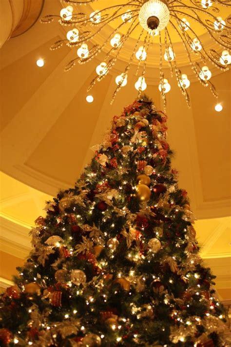 christmas tree aspirin tree