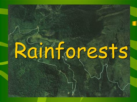 Rainforest Powerpoint Presentation By Groov E Chik Rainforest Powerpoint