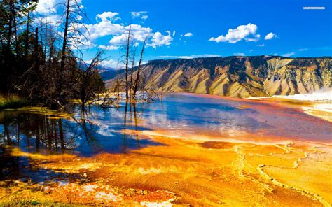 free wallpaper yellowstone national park 11 yellowstone national park wallpaper 964 yellowstone