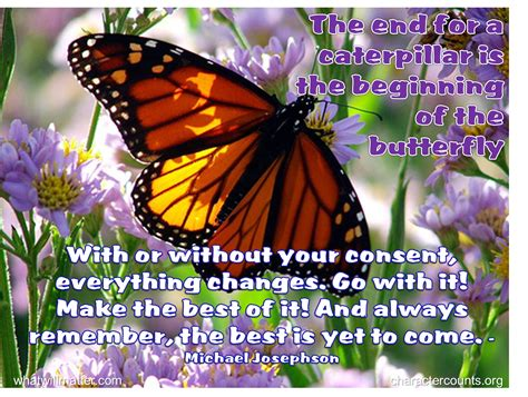 Caterpillar Aa caterpillar into butterfly quotes quotesgram