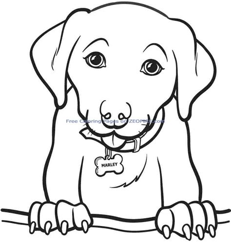 Print Out Coloring Pages For Girls Color Bros Picture Print Out